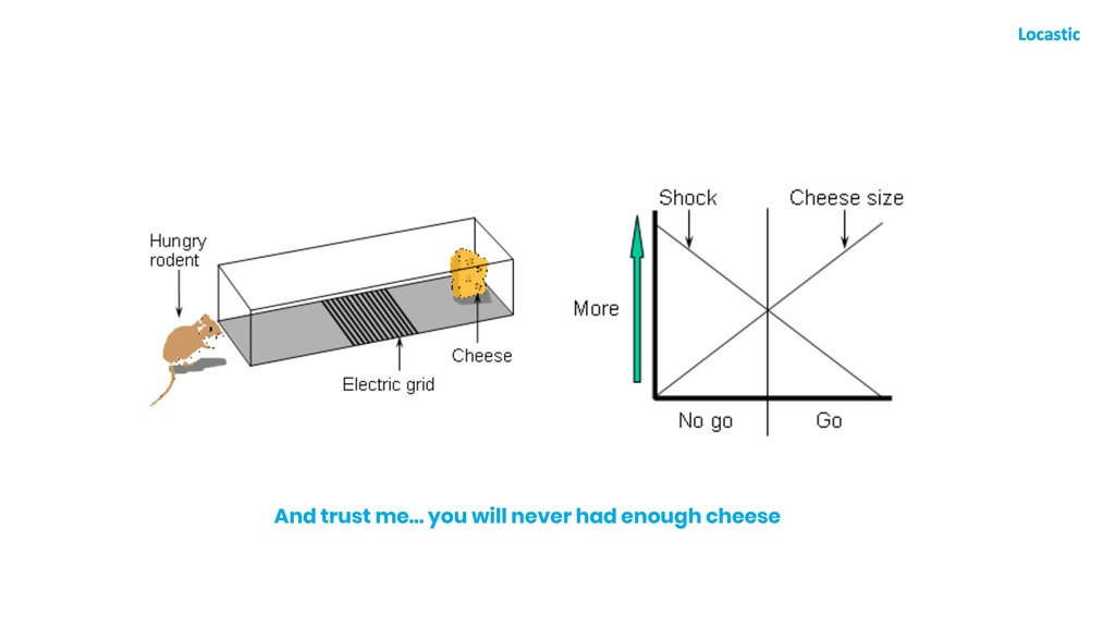 And trust me… you will never had enough cheese