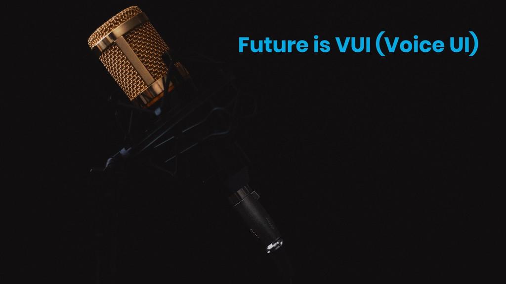 Future is VUI (Voice UI)