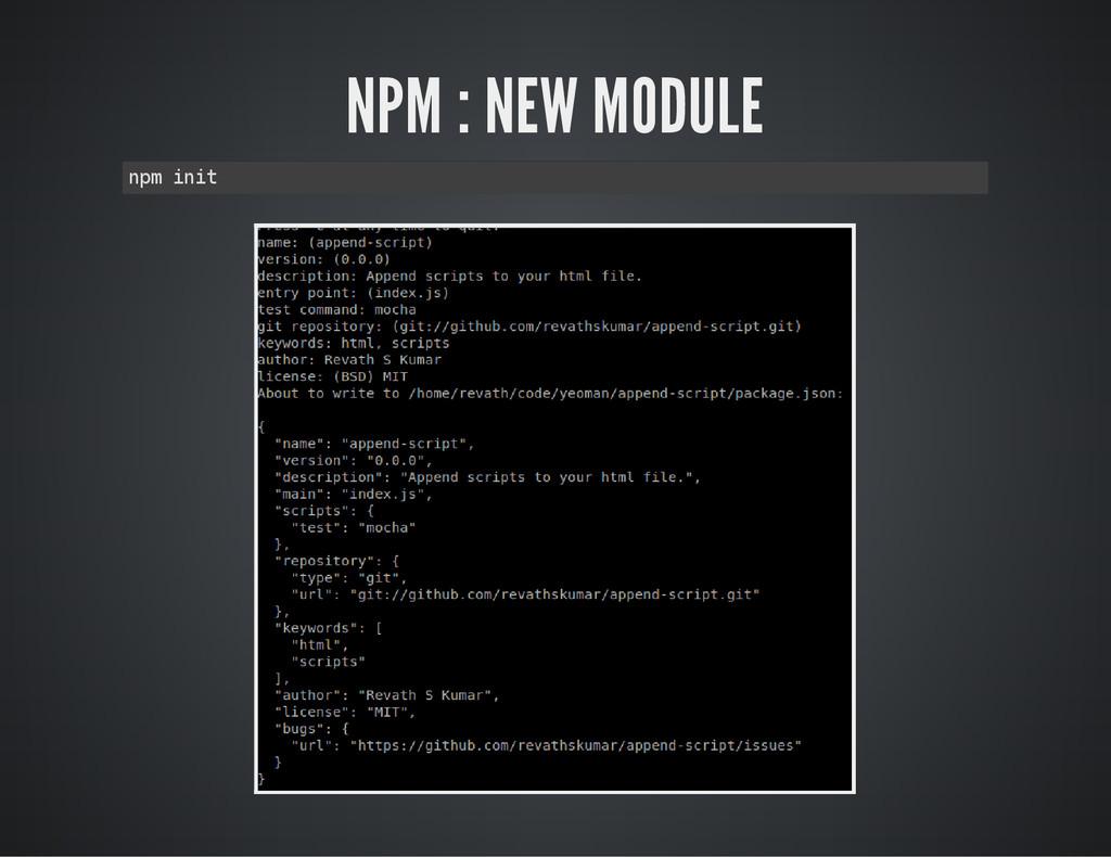 NPM : NEW MODULE n p m i n i t