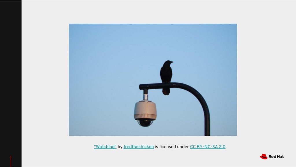 """Watching"" by fredthechicken is licensed under ..."