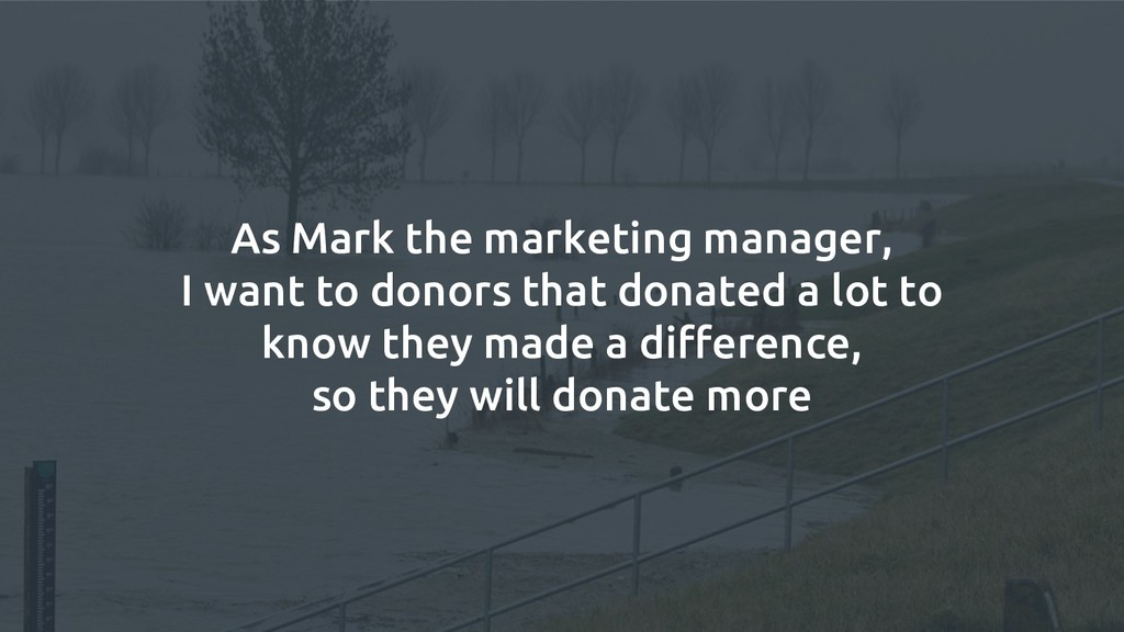As Mark the marketing manager, I want to donors...