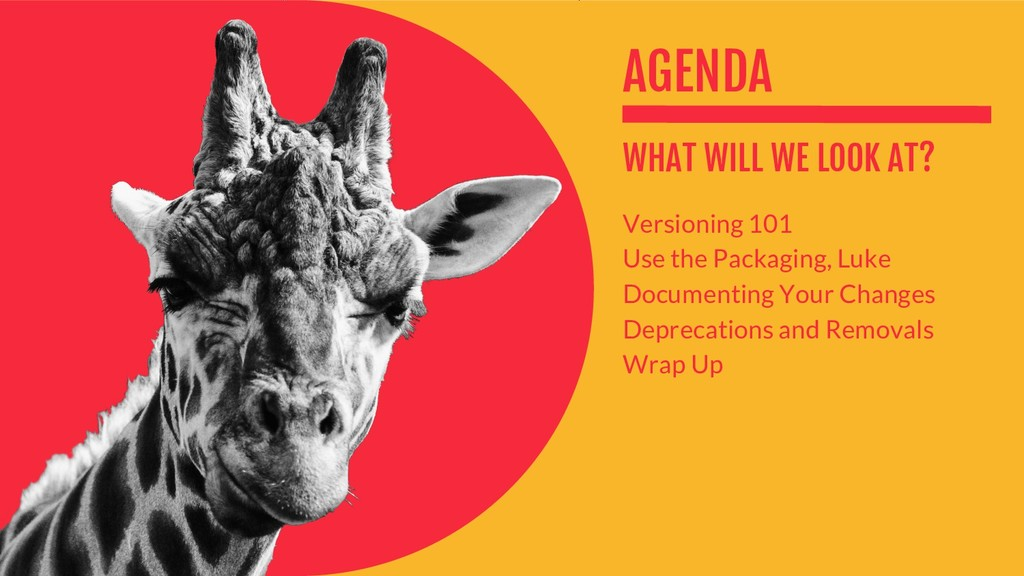 AGENDA WHAT WILL WE LOOK AT? Versioning 101 Use...