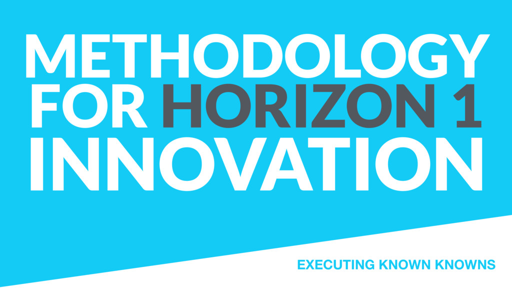 METHODOLOGY FOR HORIZON 1 INNOVATION EXECUTING ...