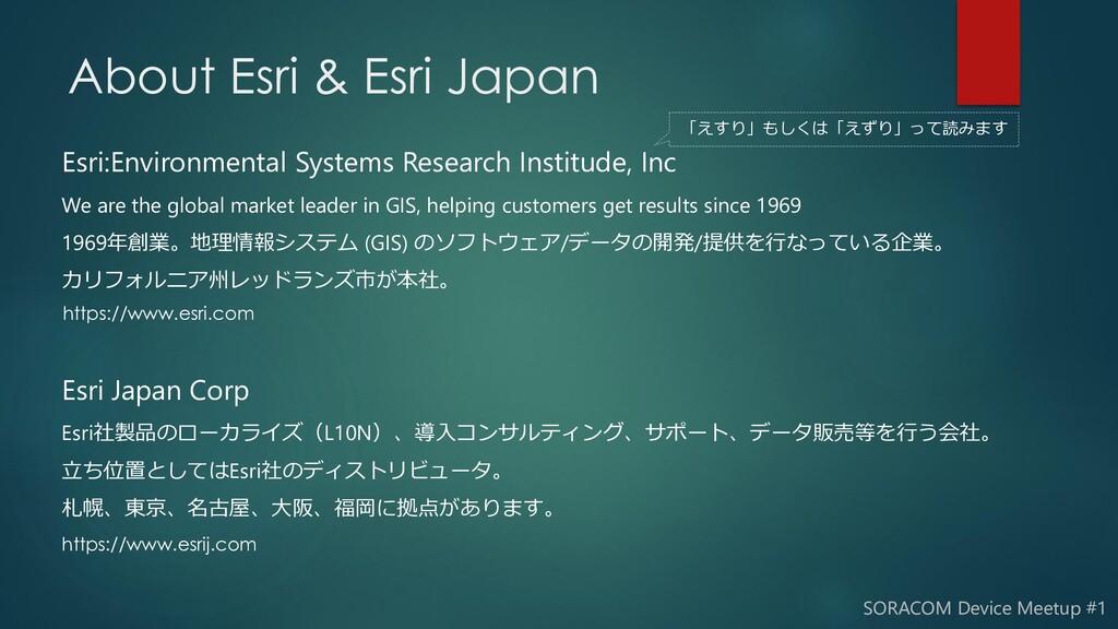 Esri:Environmental Systems Research Institude, ...