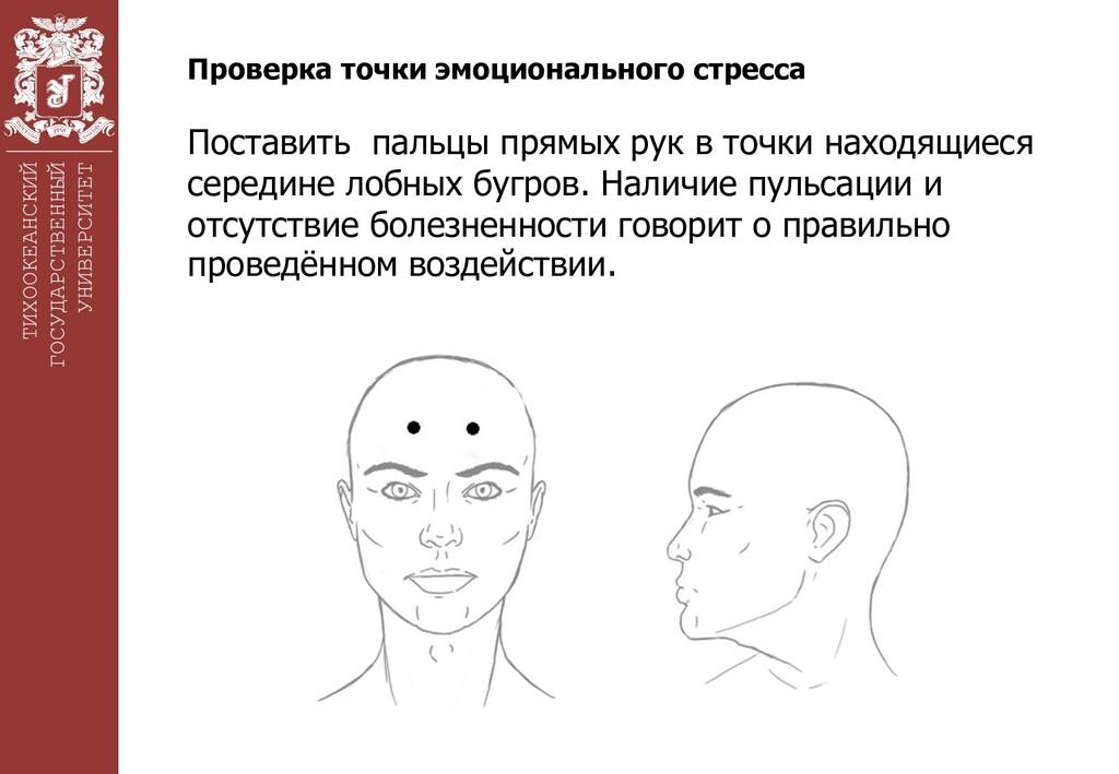 ТИХООКЕАНСКИЙ ГОСУДАРСТВЕННЫЙ УНИВЕРСИТЕТ Прове...