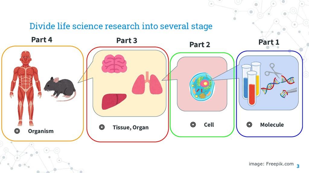 Part 1 3 image: Freepik.com ◎ Molecule ◎ Cell ◎...