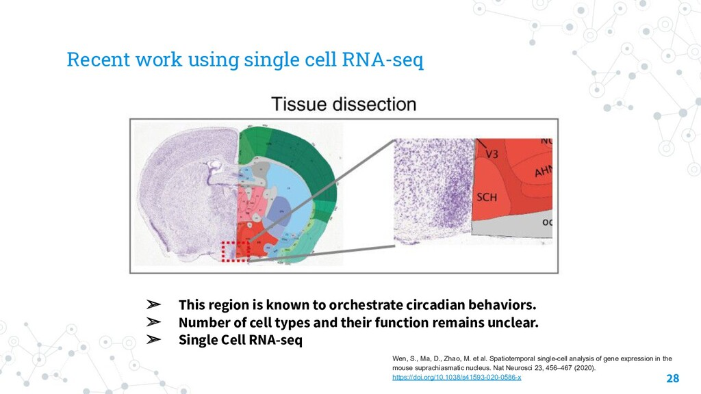 Recent work using single cell RNA-seq 28 ➢ This...