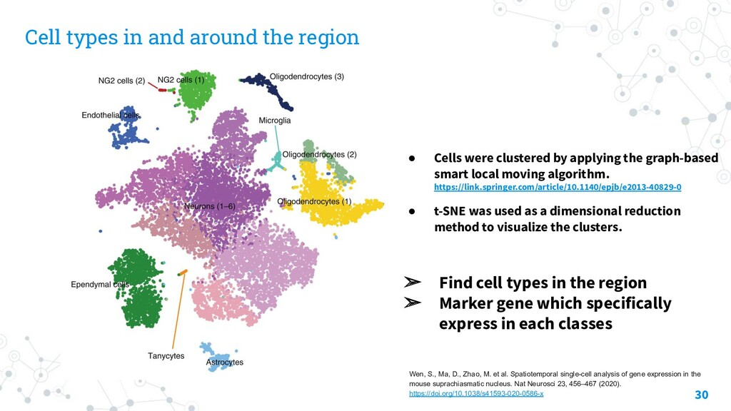 Cell types in and around the region 30 ➢ Find c...