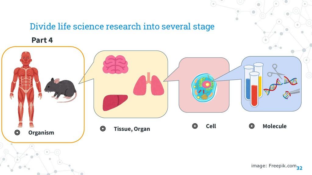 32 image: Freepik.com ◎ Molecule ◎ Cell ◎ Tissu...