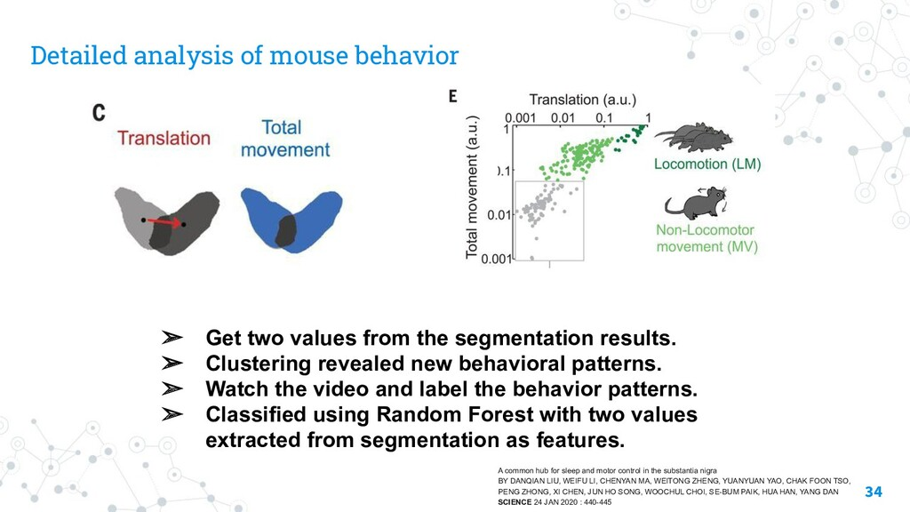 Detailed analysis of mouse behavior 34 ➢ Get tw...