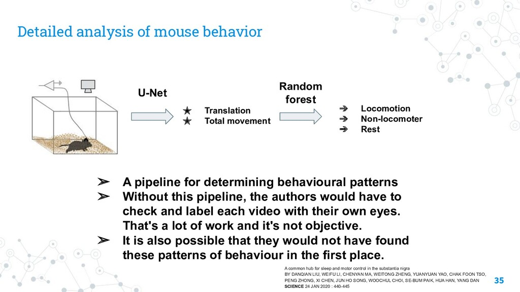 Detailed analysis of mouse behavior 35 ➢ A pipe...