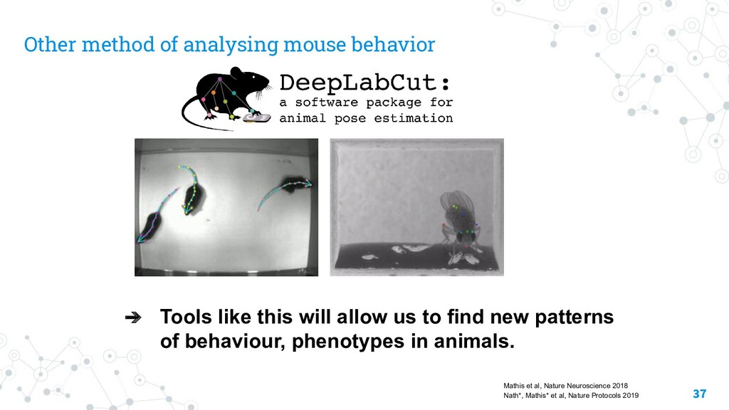 Other method of analysing mouse behavior ➔ Tool...