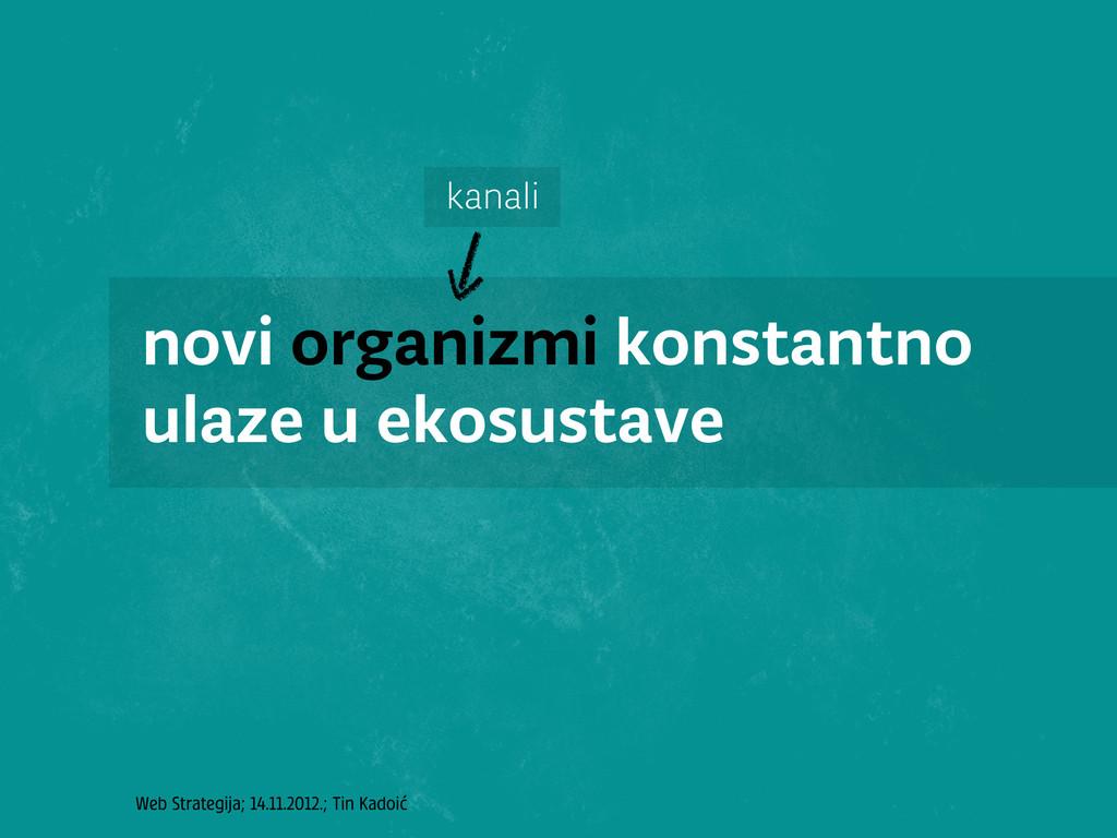 Web Strategija; 14.11.2012.; Tin Kadoić novi or...