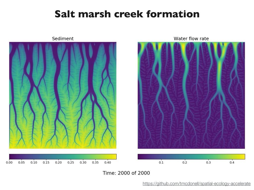Salt marsh creek formation https://github.com/t...