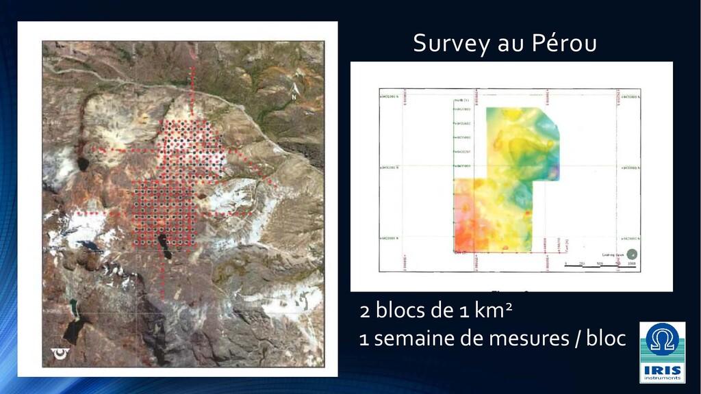 Survey au Pérou 2 blocs de 1 km2 1 semaine de m...