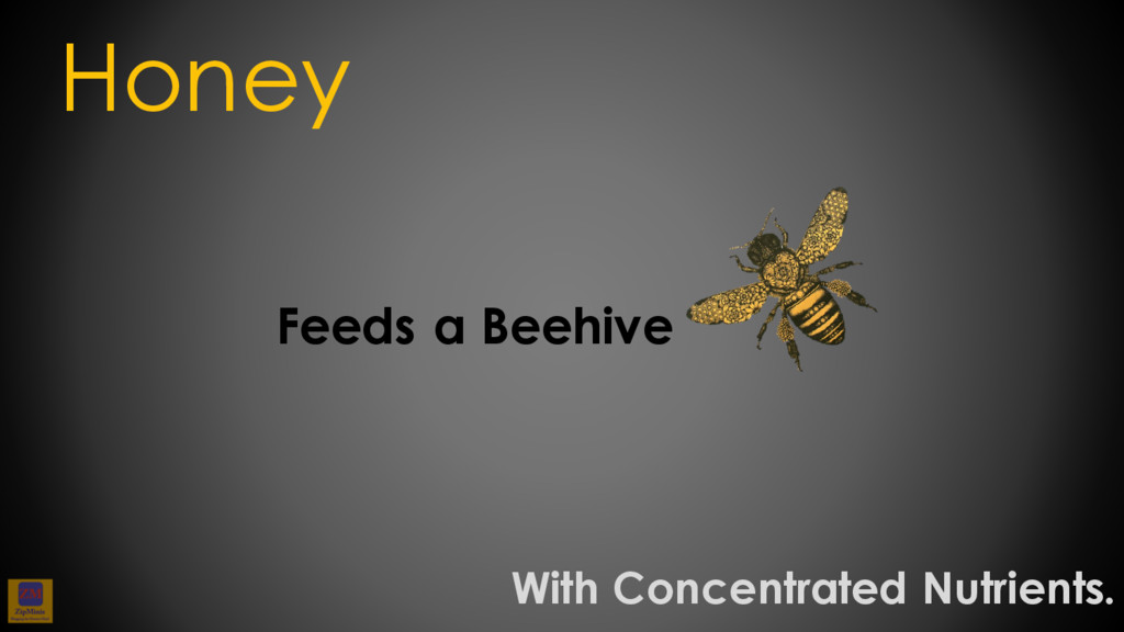 Feeds a Beehive Honey With Concentrated Nutrien...