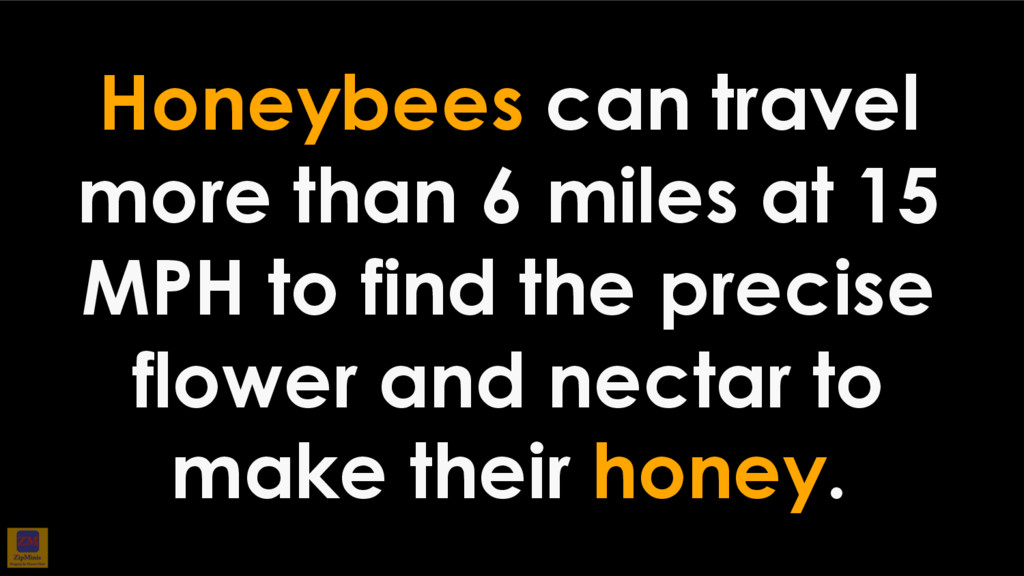 Honeybees can travel more than 6 miles at 15 MP...