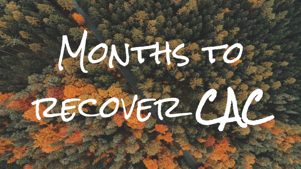 Months to recover CAC