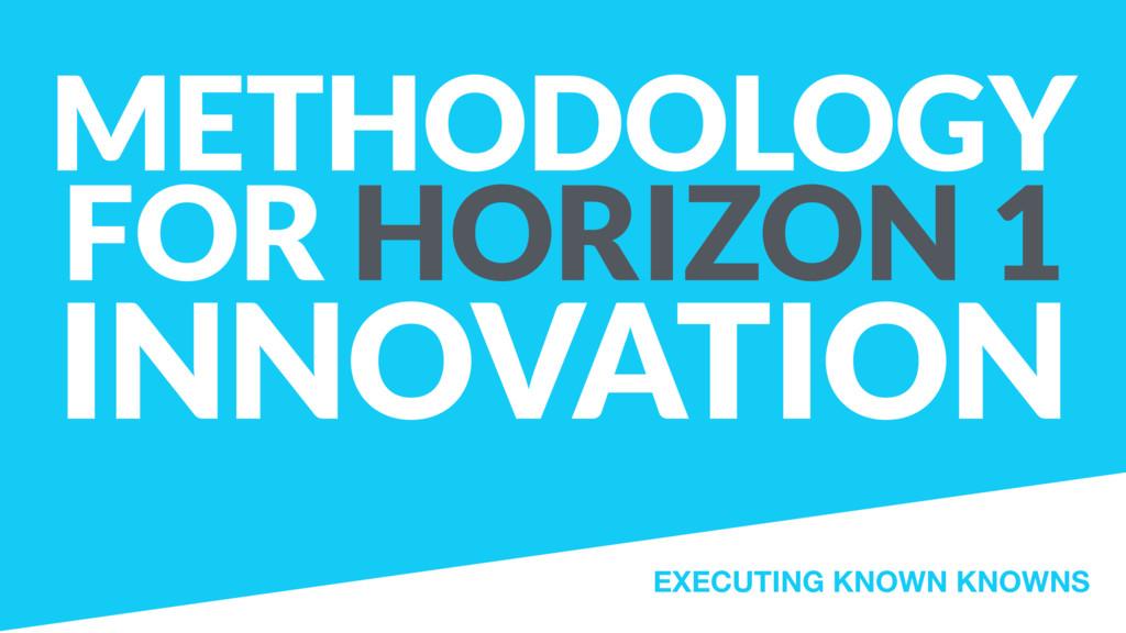 METHODOLOGY FOR HORIZON 1 INNOVATION EXECUTING ...