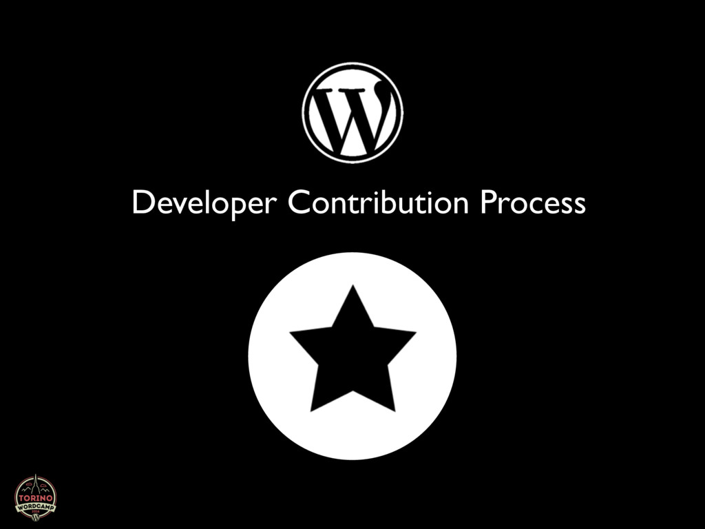 Developer Contribution Process