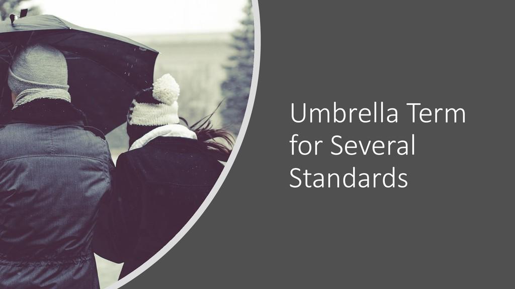 @ManfredSteyer Umbrella Term for Several Standa...