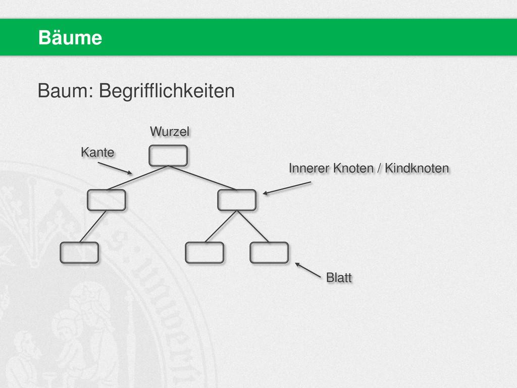 Baum: Begrifflichkeiten Bäume Wurzel Kante Inne...