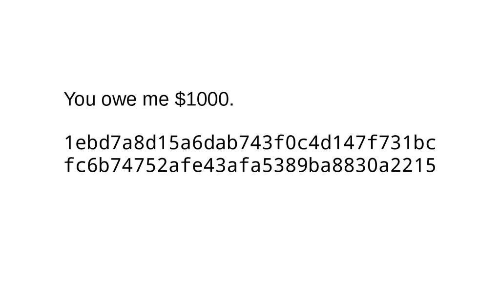 You owe me $1000. 1ebd7a8d15a6dab743f0c4d147f73...