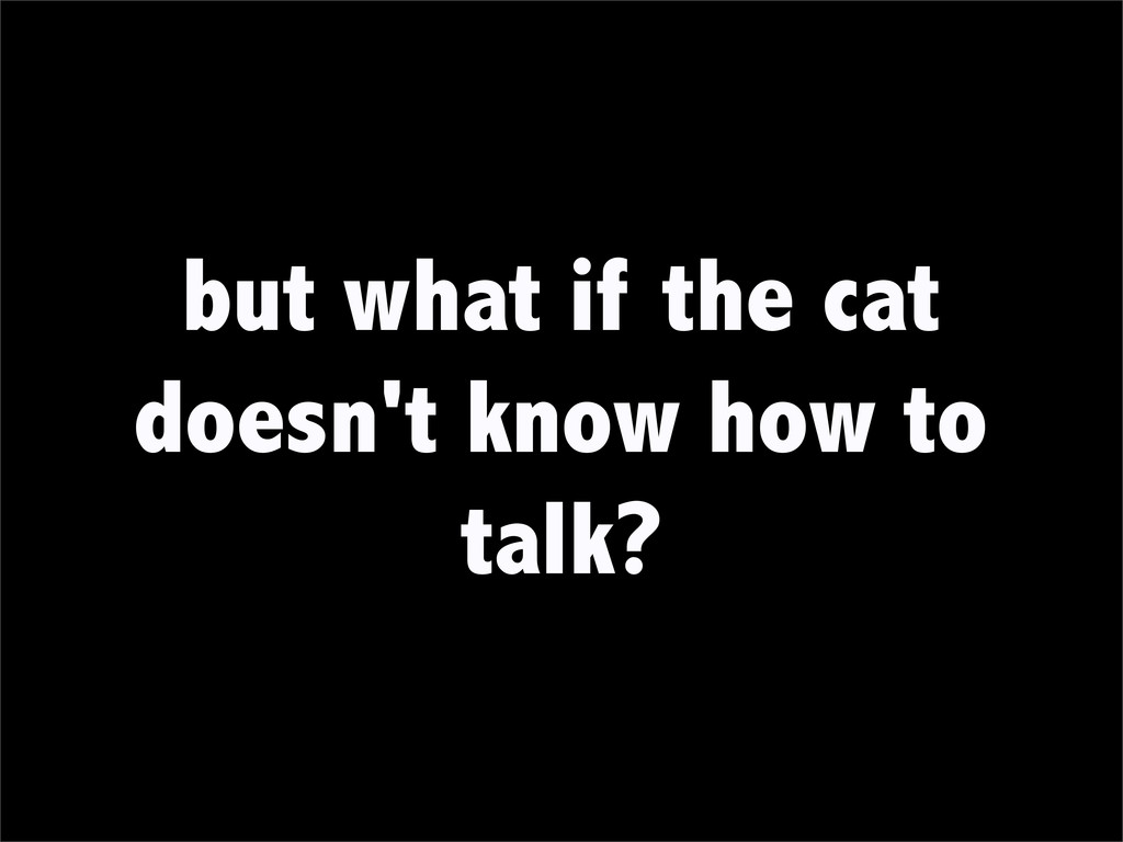 but what if the cat doesn't know how to talk?
