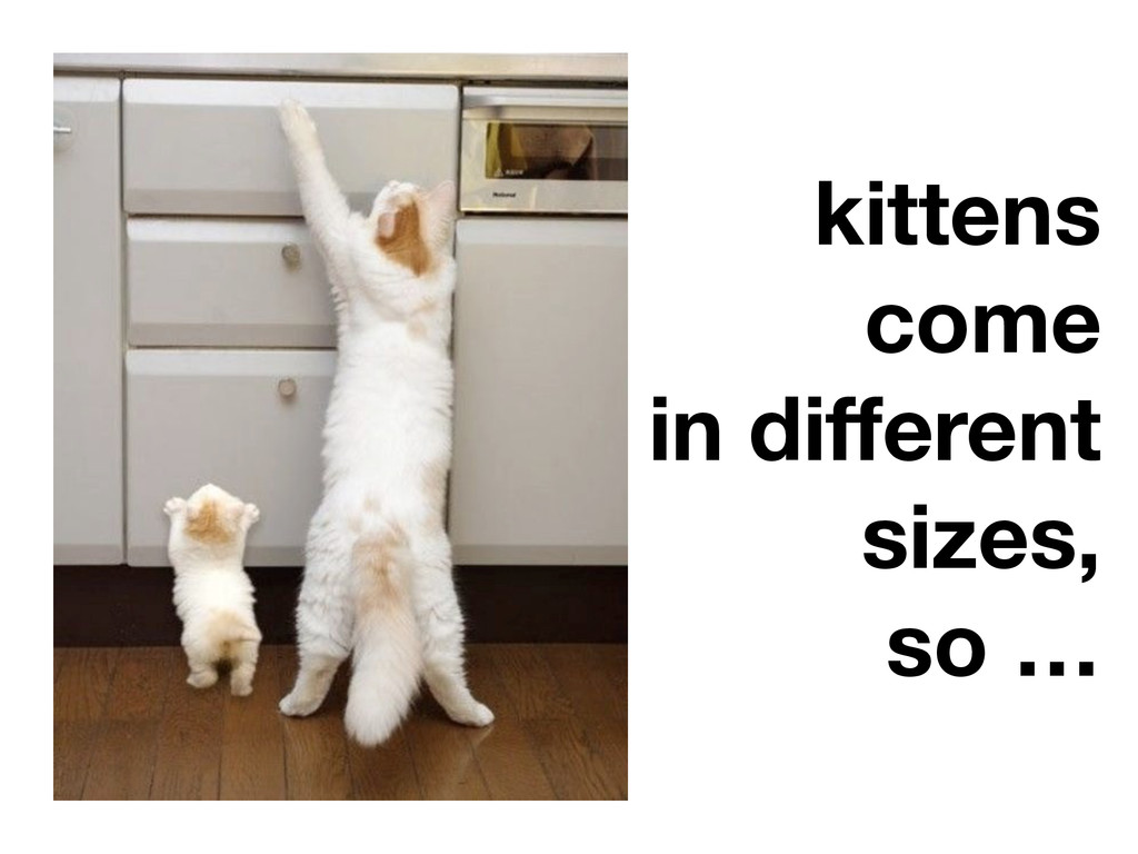 kittens come in different sizes, so …