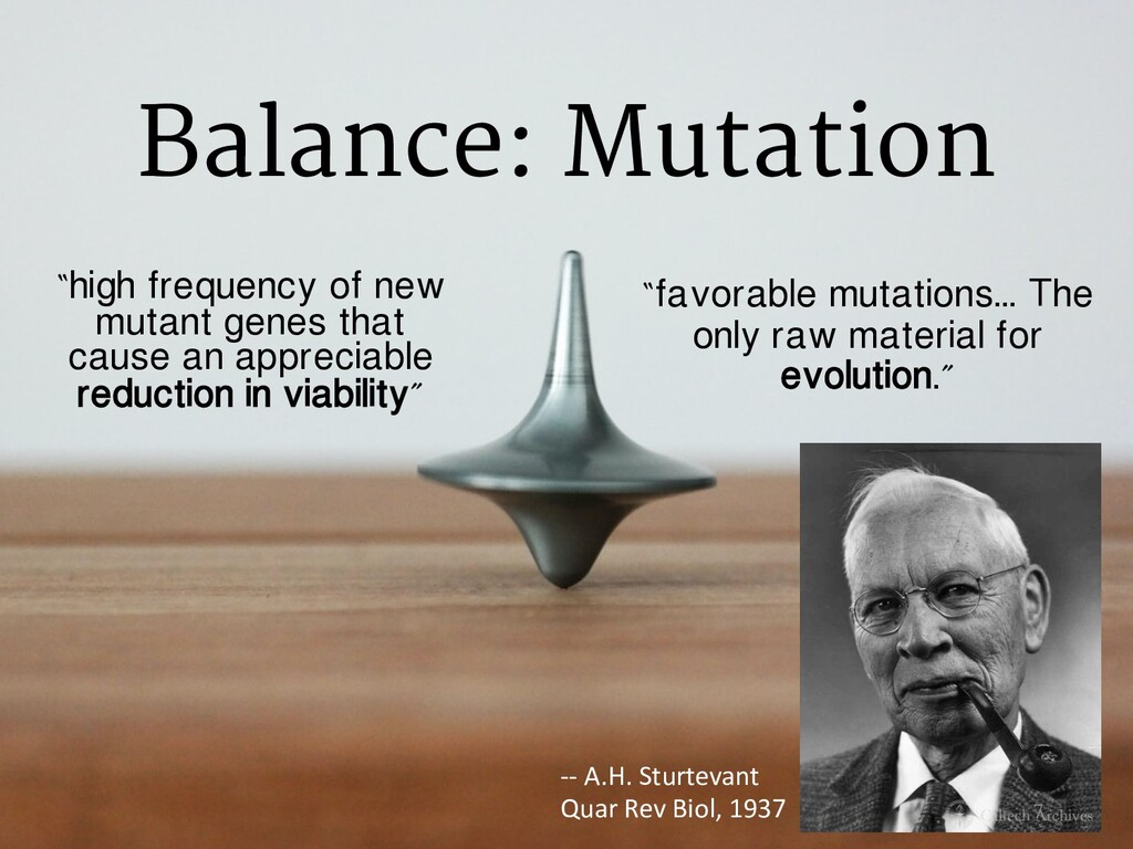 """""""favorable mutations... The only raw material f..."""