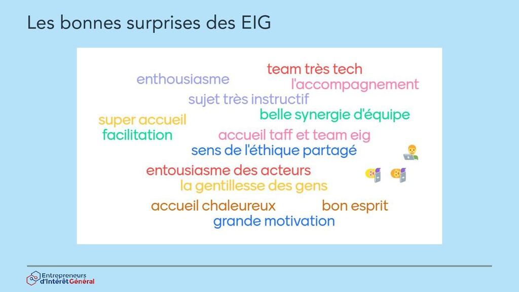 Les bonnes surprises des EIG