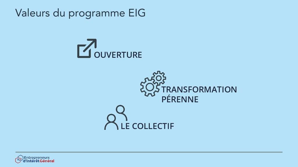 Valeurs du programme EIG OUVERTURE TRANSFORMATI...