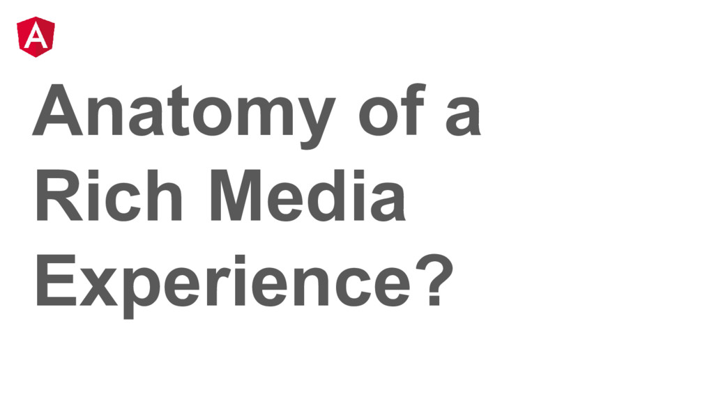 Anatomy of a Rich Media Experience?