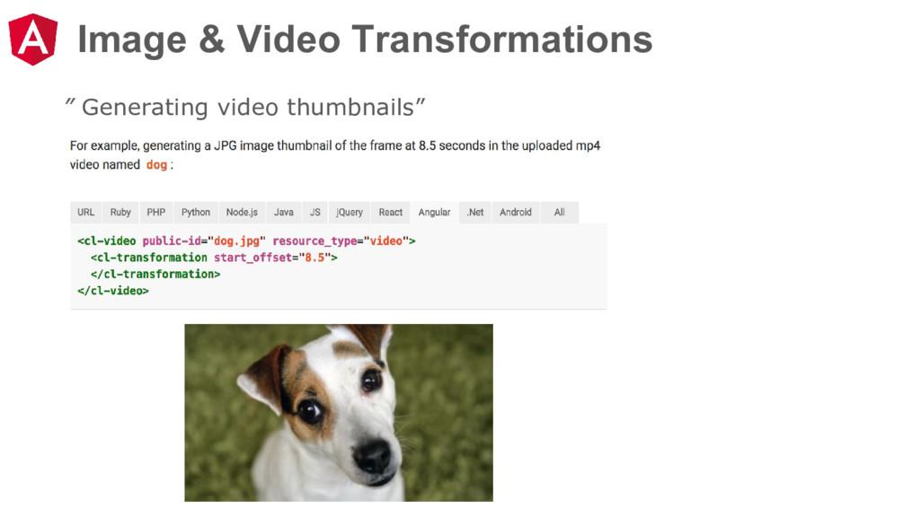 "Image & Video Transformations "" Generating vide..."