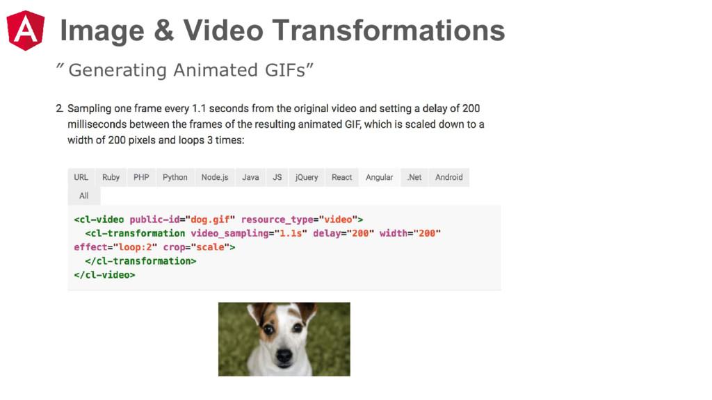 "Image & Video Transformations "" Generating Anim..."