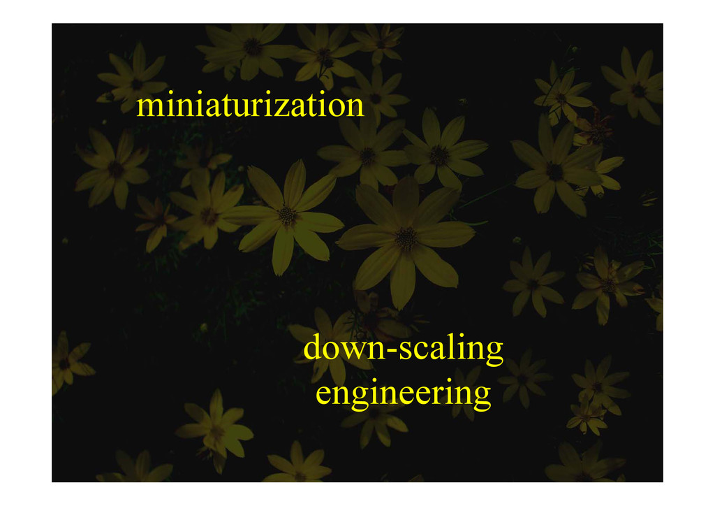 miniaturization down-scaling engineering