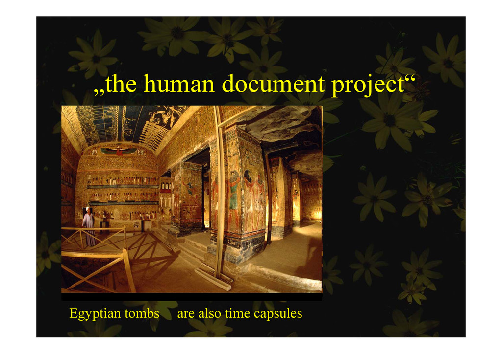 """the human document project"" p j Egyptian tombs..."
