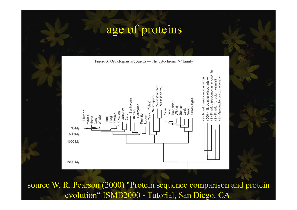 age of proteins ge o p o e s source W. R. Pears...