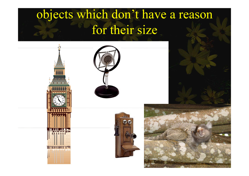 objects which don't have a reason for their si ...