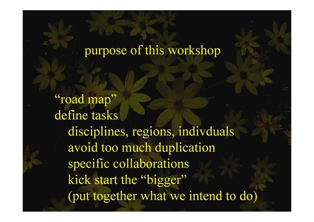 """purpose of this workshop """"road map"""" d fi k defi..."""