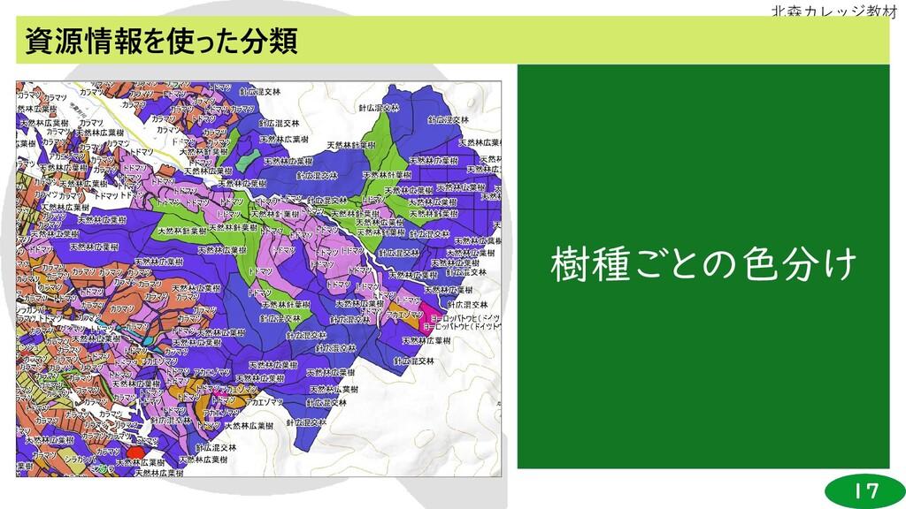 17 北森カレッジ教材 資源情報を使った分類 樹種ごとの色分け