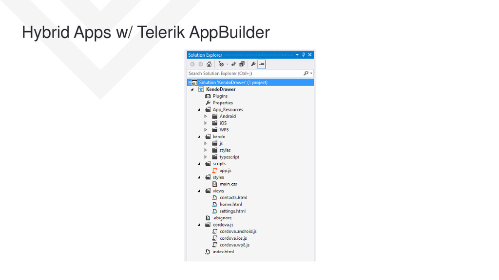 Hybrid Apps w/ Telerik AppBuilder