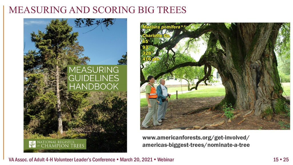 www.americanforests.org/get-involved/ americas-...