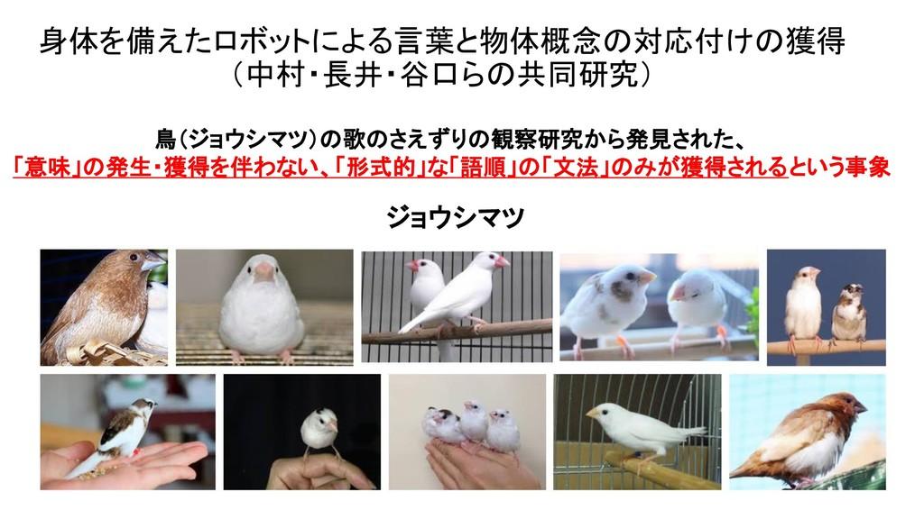 身体を備えたロボットによる言葉と物体概念の対応付けの獲得 (中村・長井・谷口らの共同研究) 鳥...