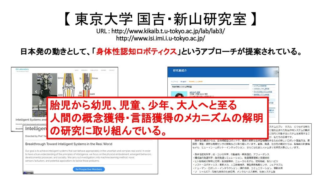 【 東京大学 国吉・新山研究室 】 URL : http://www.kikaib.t.u-t...