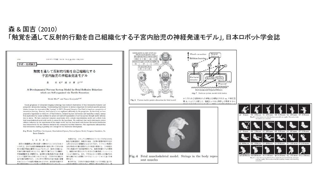 森 & 国吉 (2010) 「触覚を通して反射的行動を自己組織化する子宮内胎児の神経発達モデル...