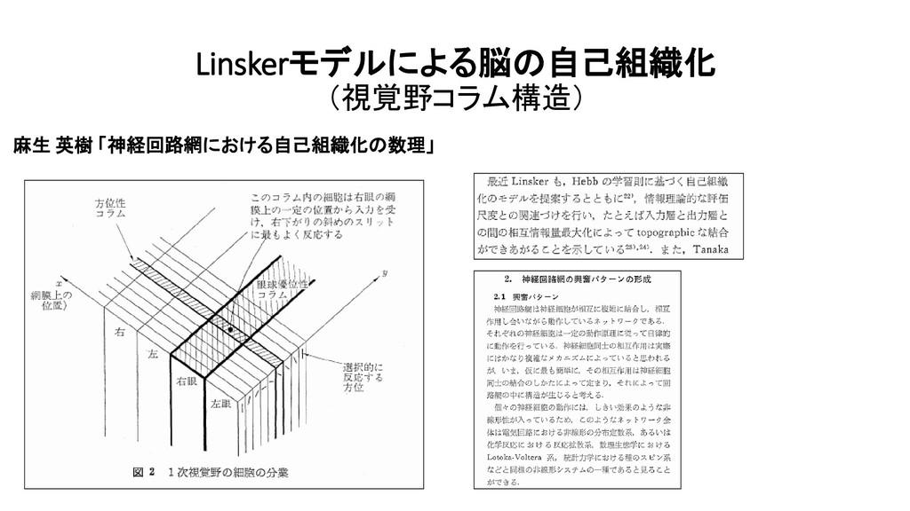 Linskerモデルによる脳の自己組織化 (視覚野コラム構造) 麻生 英樹 「神経回路網におけ...