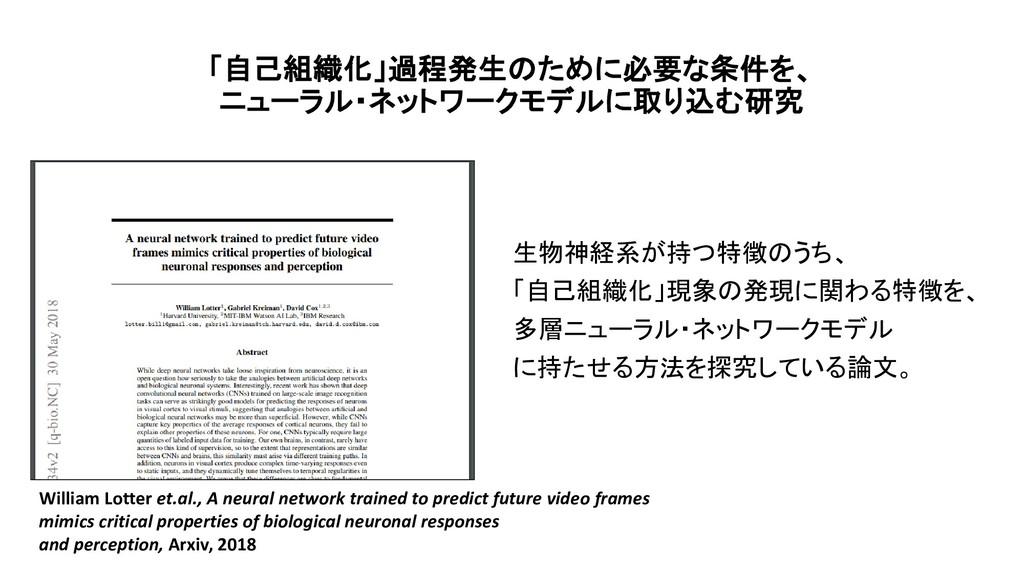 「自己組織化」過程発生のために必要な条件を、 ニューラル・ネットワークモデルに取り込む研究 生...