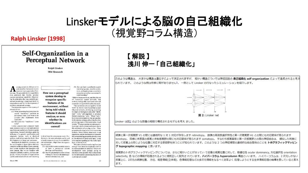 Linskerモデルによる脳の自己組織化 (視覚野コラム構造) Ralph Linsker [...