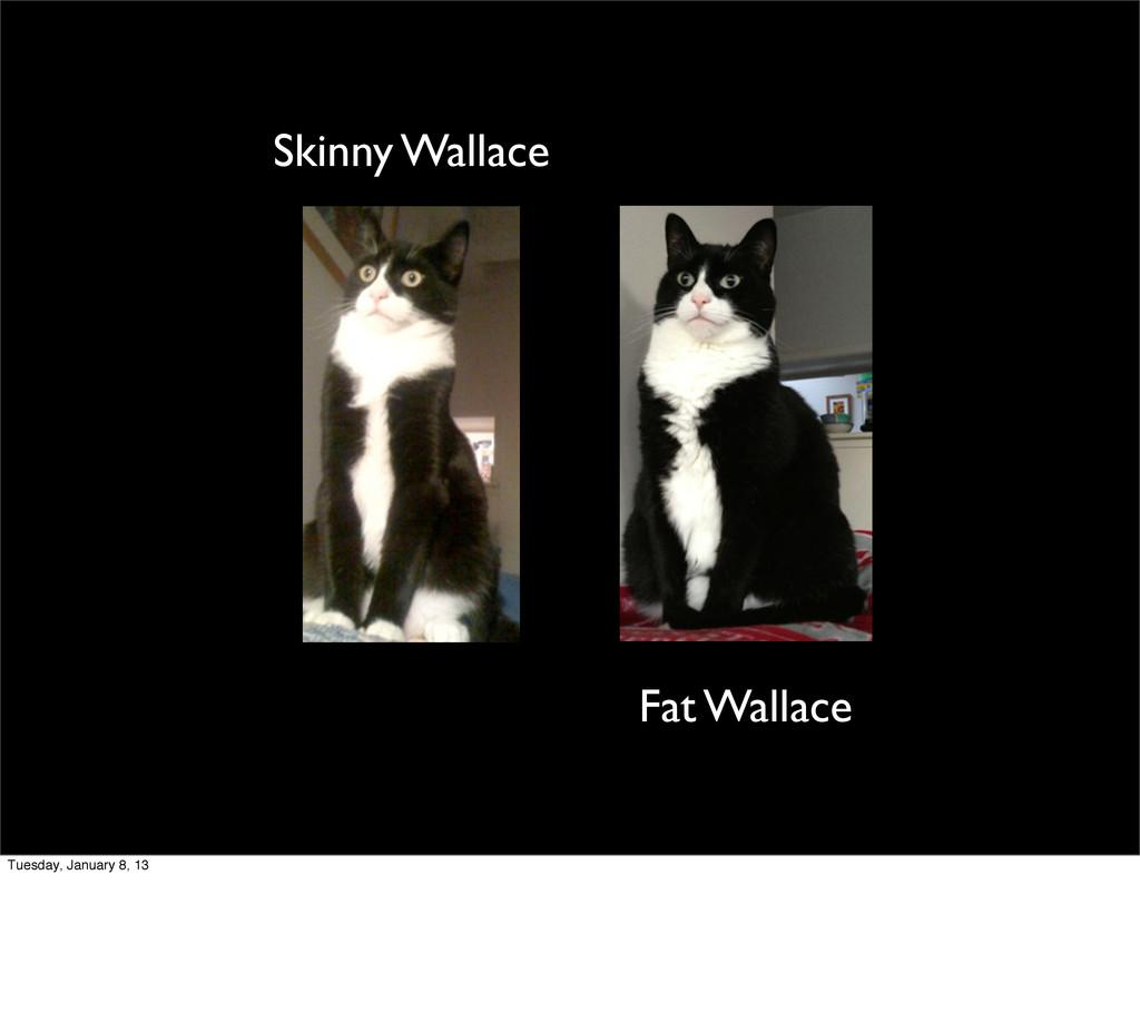 Skinny Wallace Fat Wallace Tuesday, January 8, ...